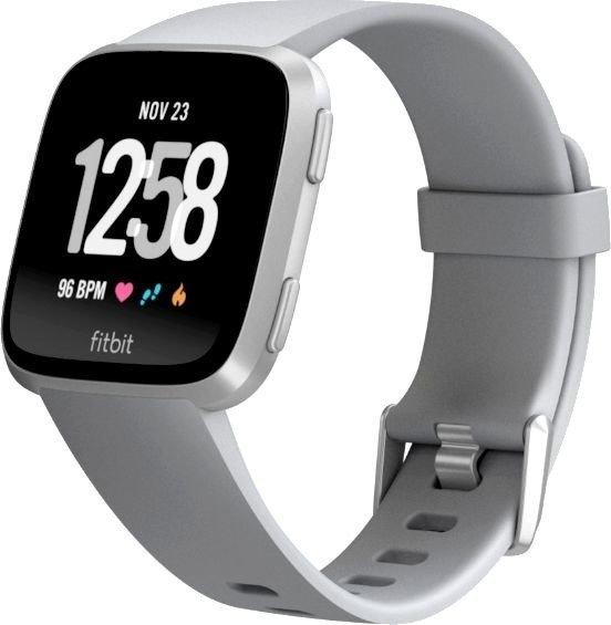 Fitbit Versa Smartwatch Special Edition grey-silver (NFC)